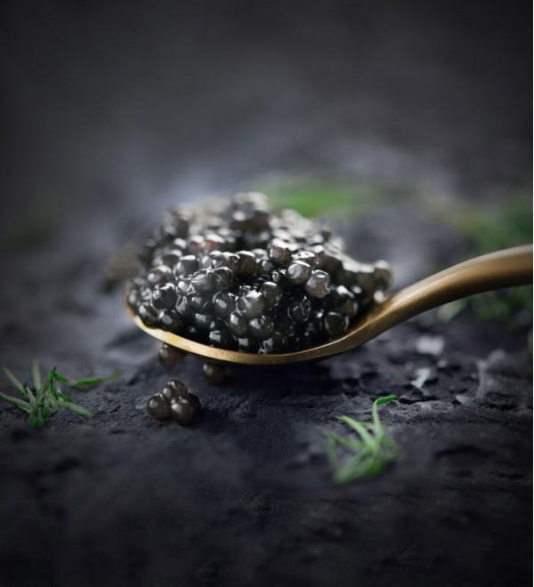Royal Beluga Caviar ( 50 gr )